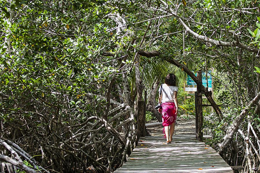 Yalahau_Cenotes